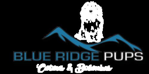 Blue Ridge Pups